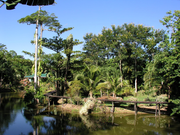 Sabah Guided Tours