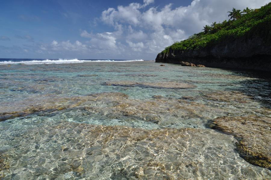 Big Island Tour Guide