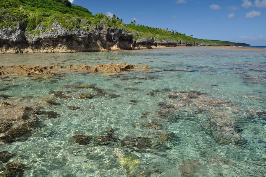 Excursions In Niue Exploring Secluded Coves And Beaches