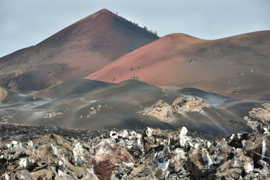 Ascension Island Travel Guide - Do It In in Africa