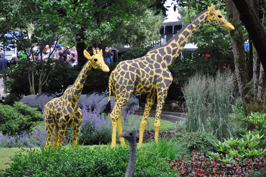 billund zoo cph escort