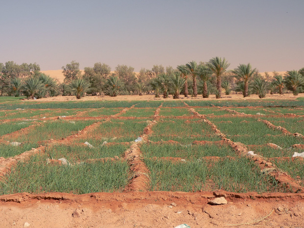 What Is Libya S Natural Resources