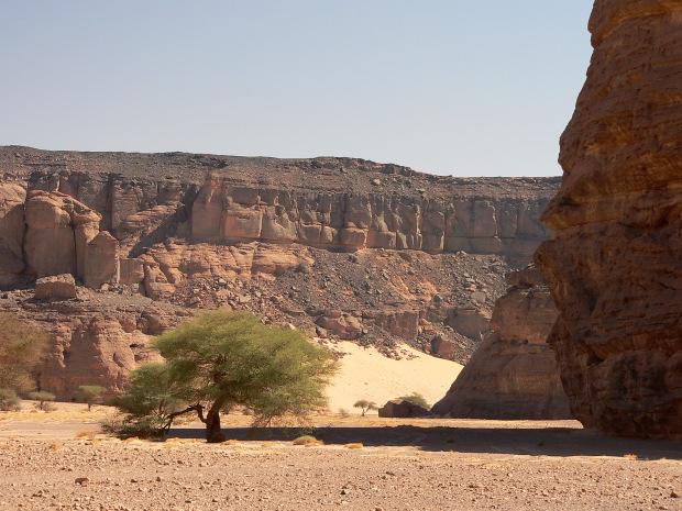 Graffiti And Paintings Of Acacus Fezzan Sahara Desert