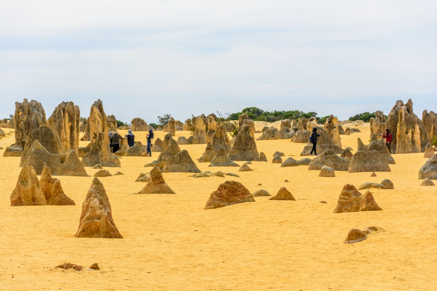 The Pinnacles and the sand dunes of Lancelin